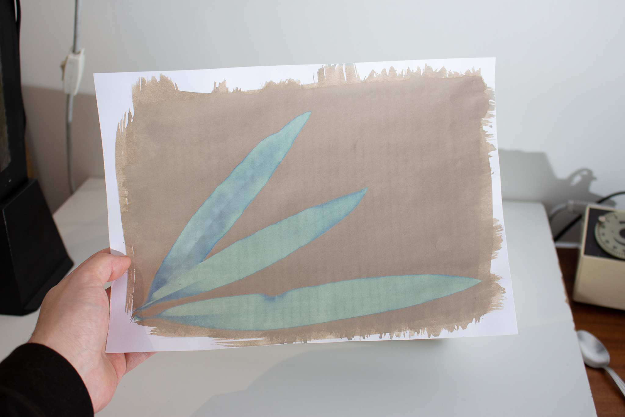 Un cyanotype après avoir été exposé
